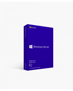 Windows Server 2012 R2 + 10 CALs DS License